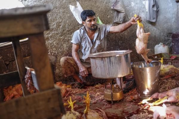 Ett nytt utbrott av pandemisk svin- eller fågelinfluensa kommer att ställa stora krav på koordinering av verksamhet och kommunikation bland berörda myndigheter och samhällsfunktioner. Foto: paulprescott72, iStockphoto.com.