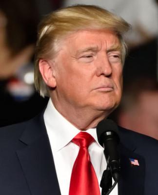 Donald Trump. Foto: Evan El-Amin / Shutterstock.com