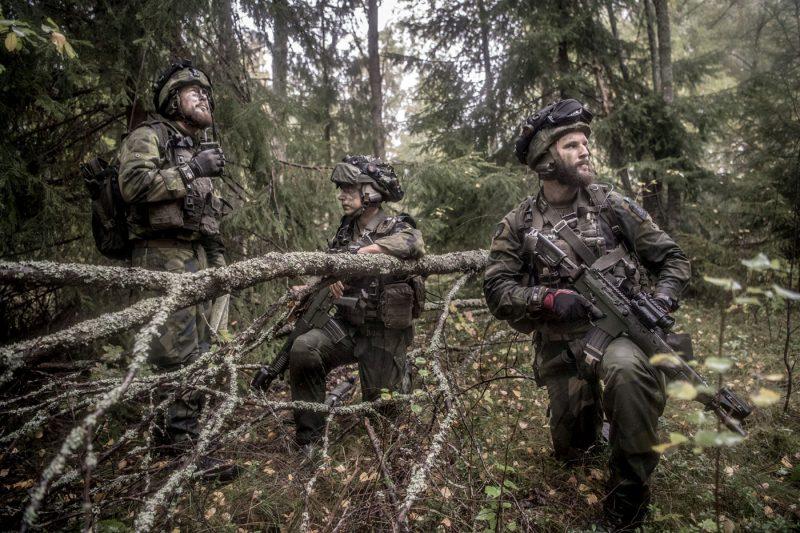 Författaren argumenterar för att förstärkt territorialförsvar. Foto: Bazev Mahmoud, Försvarsmakten.